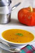 Pumpkin soup with pepper corns