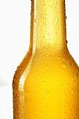Hop lemonade in bottle (close-up)