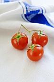 Cherry tomatoes on tea towel