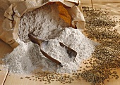 Rye flour in paper sack, scoop and grains
