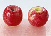 Two red apples with drops of water