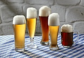 Five different Bavarian beers in glasses