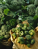 Broccoli: whole heads and florets