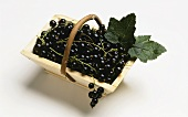 Blackcurrants in a wooden basket
