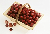Fresh cranberries in a wooden basket
