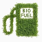 Image symbolising biofuel (n cress)