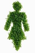 Figure symbolising woman (in cress)
