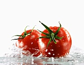 Two tomatoes surrounded with water