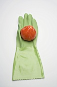 Tomato on green rubber glove