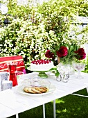 Cakes, biscuits and juice on laid table in garden