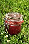 Red berry chutney in grass