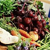 Beetroot, carrots, onion, green beans, celeriac