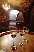 Three glasses of white wine on wine cask in wine cellar