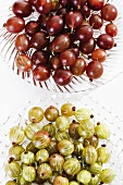 Red and green gooseberries on glass plates (overhead view)