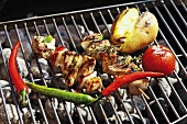 Pork kebabs and vegetables on barbecue rack