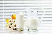 Milk in glass and glass jug