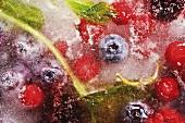 Assorted berries in block of ice
