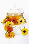 Marigold tea in glass teapot, marigolds, glass cup