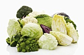 Assorted brassicas (broccoli, white-, pointed-, savoy- & Chinese cabbage, cauliflower)