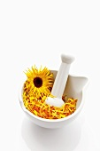 Marigolds in mortar with pestle