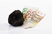 Euro notes and black truffle