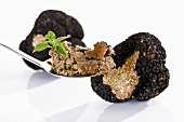 A spoonful of truffle pesto and black truffles