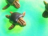 "Pecan, Chocolate and Caramel ""Turtles"""