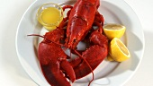 Cooked lobster with butter sauce and lemon
