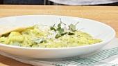 Kräuterravioli auf Teller anrichten