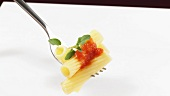 Rigatoni with tomato sauce and marjoram on fork