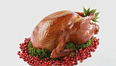 Roast turkey with cranberries