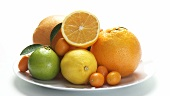 Assorted citrus fruit on plate
