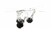 Brombeeren fallen ins Wasser