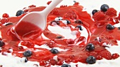 Mixing yoghurt with fresh berries and berry sauce