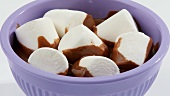 Marshmallows in melted couverture chocolate