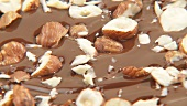 Hazelnuts in melted chocolate