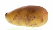 Eine Kartoffel