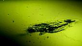 Tropfen fallen ins Wasser (Close Up)