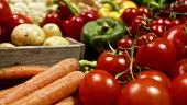 Frisches Gemüse (Karotten, Tomaten etc.)