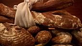 Frisch gebackene Brote