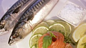 Gravlax and mackerel
