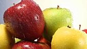 Verschiedene Äpfel werden gewaschen