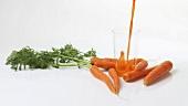 Karotten und frisch gepresster Karottensaft