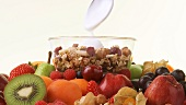 Assorted fruit and muesli with yoghurt