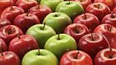 Viele rote und grüne Äpfel