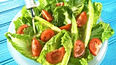 Putting salad dressing on romaine lettuce and tomato salad