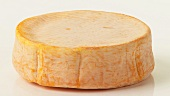 A whole washed rind cheese