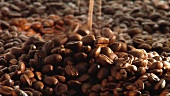 Coffee beans falling onto each other