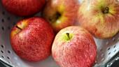 Äpfel im Sieb waschen