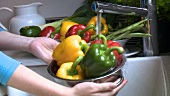 Washing peppers in a colander under running water
